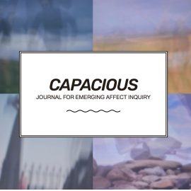 Article in Capacious